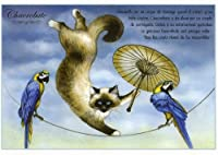 ねこの引出し フランス製猫のポストカード  ★Chacrobate