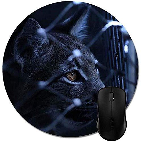 Gato Negro en la Cerca de Alambre del ciclón Alfombrilla de