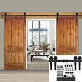 Smartxchoices 12FT Double Sliding Barn Door Hardware Kit Classic Mount Barn Door Rail System w/Track Rollers Matching Hardware Black