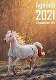 Agenda 2021 Semainier A4: Grand Modèle, 2 Pages Par Semaine, avec To Do Liste (a Faire) et Horaires (par Demi Heure) de Janvier à Décembre (Couverture cheval et nature)