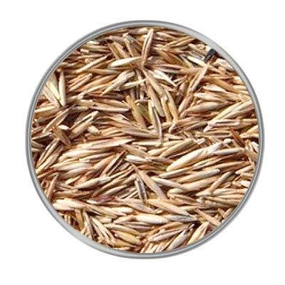 Hungenberg's Grassamen 1 kg