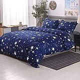 YMY Lightweight Microfiber Bedding Duvet Cover Set, Cute Star Pattern (Blue, Queen)