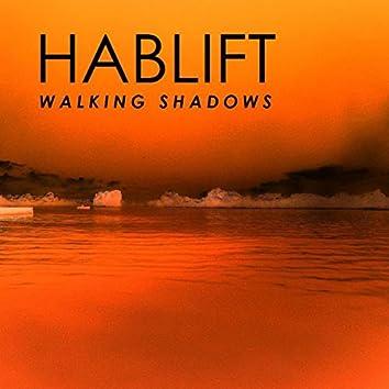 Walking Shadows (Remixes)