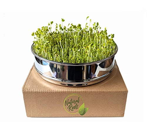 Stainless Steel Seed Sprouting Tray-8 Inch Stackable Sprouter Kit for Growing Fresh Organic Broccoli Sprouts, Wheat Grass, Alfalfa Seeds, Fenugreek, Mung Beans and More (Seeds not Included)