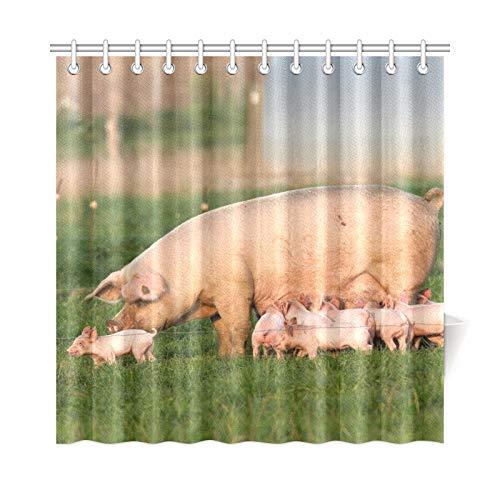 Zemivs Wohnkultur Bad Vorhang Sau Junges Schwein Freerange Polyester Stoff Wasserdicht Duschvorhang Für Bad, 72X72 Zoll Duschvorhang Haken Enthalten