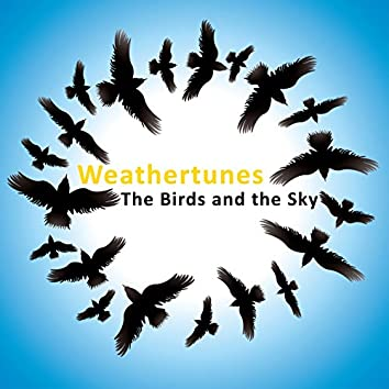 The Birds And The Sky