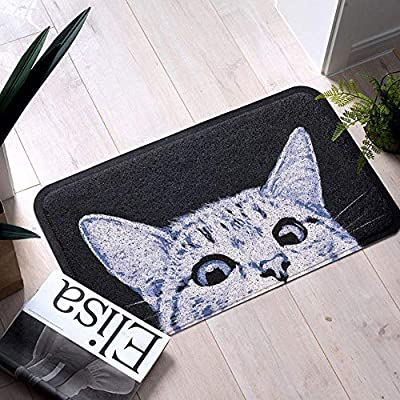 Cat Front Doormat Dirt Trapper, Anti-slip Bath Rug Entrance Door Mat Rug, Outside Patio/Inside Entry Way, Anti-fatigue Kitchen Mat, Duraloop Mesh Entrance Welcome Mat, Durable & Washable, 18x30