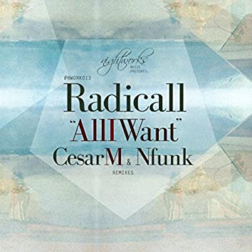 All I Want (Remixes)