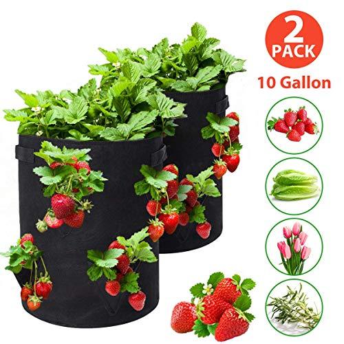 Tvird Borsa per Piante, 10Gallon Strawberry Plant Grow Bag con Manici, Borsa per Sacchi Traspirante e Durevole per Patate, pomodori e Fragole, Confezione da 2 (Nero)