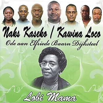 Lobi Mama (Ode aan Elfriede Baarna Dijksteel)