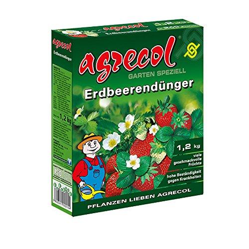 Premium granulés erdbeerdünger erdbeerendünger longue effet fortement concentré et hochergiebig-convient pour une surface de plants 240 de fraisiers