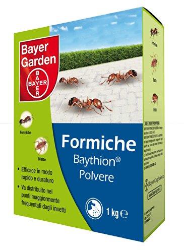 Bayer - Baythion insetticida Formiche polvere 1 KG
