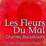 Les fleurs du Mal - Compagnie du Savoir - 01/01/2011