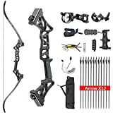 HYF Takedown Recurve Bow Package R3,Ready to Shoot Archery Set for Adults,Bow and Arrow Set (Black, 40lbs)