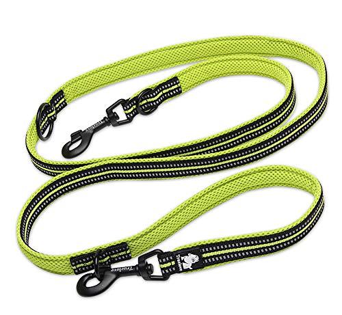 Tineer Pet einstellbar 2 Hunde Hände frei Nylon Multi-funktionale reflektierende Hundeleine für Walking Training Hundeleinen Leashes (M, Grün)