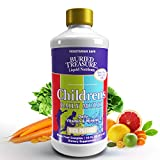 Children's Daily Liquid Multivitamin & Minerals Nutritional Dietary Supplement for Kids No Artificial Ingredients, Natural Fruit Flavors 16 oz