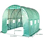 FDW L10'xW7'xH7' Greenhouse for Outdoors Greenhouse Plastic Mini Greenhouse Kit Indoor Portable Greenhouse Plant Shelves… 12 ♠【LARGE TUNNEL GREENHOUSE】The greenhouse use PE fabric with 1 rolling-up door and 8 vents for entry greenhouse. Tunnel greenhouse design offers growing space and ventilation for large size plants. ♠【PROTECT THE PLANTS】Outdoor greenhouse will surely extend your plants growing season no matter where you live, greenhouse can be set up easily. ♠【EASY TO ASSEMBE】The greenhouse comes with all hardware & necessary tools. Follow the portable greenhouse instruction, you'll found easy to set up, and estimated assembly with 2 people.