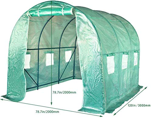FDW L10'xW7'xH7' Greenhouse for Outdoors Greenhouse Plastic Mini Greenhouse Kit Indoor Portable Greenhouse Plant Shelves… 5 ♠【LARGE TUNNEL GREENHOUSE】The greenhouse use PE fabric with 1 rolling-up door and 8 vents for entry greenhouse. Tunnel greenhouse design offers growing space and ventilation for large size plants. ♠【PROTECT THE PLANTS】Outdoor greenhouse will surely extend your plants growing season no matter where you live, greenhouse can be set up easily. ♠【EASY TO ASSEMBE】The greenhouse comes with all hardware & necessary tools. Follow the portable greenhouse instruction, you'll found easy to set up, and estimated assembly with 2 people.