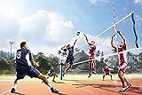 Volleyball Sport XXL Wandbild Kunstdruck Foto Poster P0528