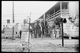 Photo: Cannon Canning Company,Bridgeville,Delaware,DE,Farm Security Administration,1