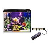 Radys Kit Aitana Fish 35 LTS (42x25x38 cm)