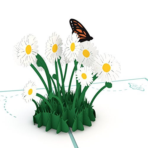 Lovepop Daisy Patch Pop Up Card - 3D Card, Greeting Card, Flower Card, Anniversary Card, Mother's Day Card, Birthday Card, Appreciation Card (Retiring Design)