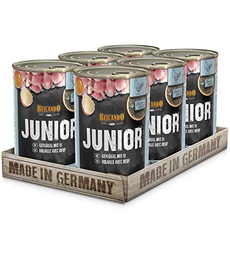 Belcando Super Premium [6er Multipack] | Nassfutter für Hunde | Feuchtfutter Dose | Alleinfutter für Hunde Aller Rassen (Junior Geflügel & Ei, 400 g)