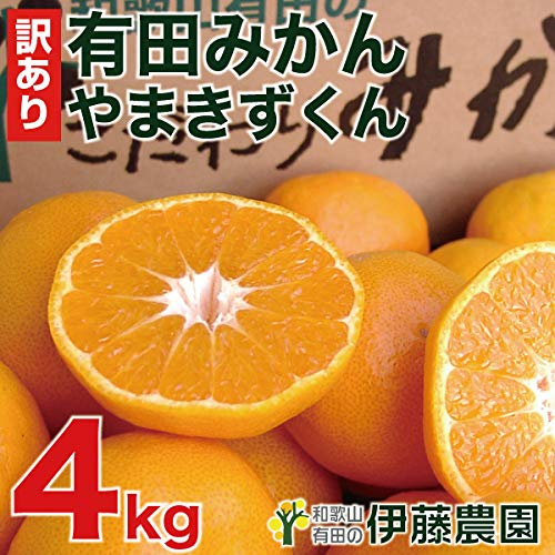 伊藤農園 有田みかん 訳あり 傷有り サイズ不選別 3L 2L L S SS 4kg ミカン家庭用 果物 柑橘 和歌山