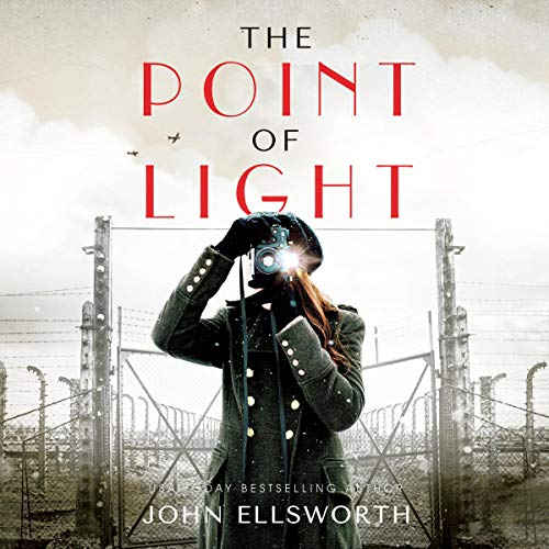The Point of Light audiobook cover art
