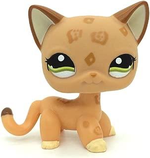 Best lps orange cat green eyes Reviews