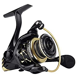 Kastking reels review: KastKing Valiant Eagle