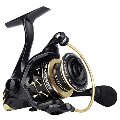 KastKing Valiant Eagle Spinning Reels, Black Gold Fishing Reel, Size 2000