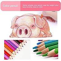 ピンクのケースの絵が付いているアートステーショナリー画材クレヨン色の水彩ペンアートセット学生スケッチ