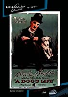 Dog's Life / [DVD] [Import]