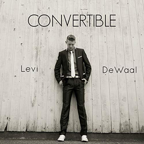 Levi DeWaal