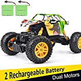 DOUBLE E No 4WD Rock Crawler 1/18 Dual Motors Rechargeable Remote Control Truck Off Road RC Car