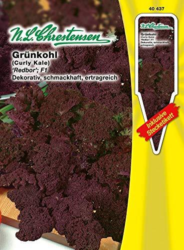 N.L. Chrestensen 40437 Grünkohl Redbor F1 (Grünkohlsamen)