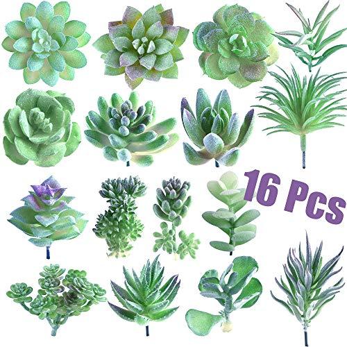 FEPITO 16 Piezas Tamaño Aleatorio Plantas Suculentas Artificiales Selecciones de Suculentas no Manchadas Planta de Imitación Suculenta en Tallos Verdes para la Decoración Casera del Jardín Interior