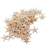 KISSFRIDAY 100pcs Mini Starfish Craft Decoration Natural Sea Stars DIY Beach Cottage Wedding Decor Gifts