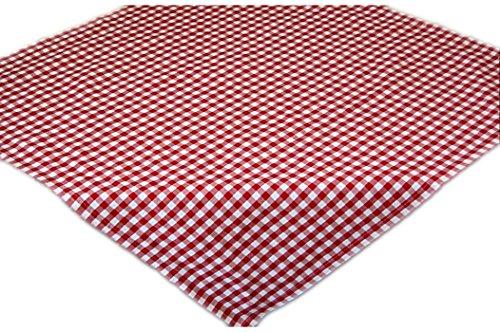 Pflegeleichte Tischdecke Decke Unterdecke Eckig Rot Weiß Karierte Gartendecke Küchendecke Landhaus (Mitteldecke 110x110 cm quadratisch)