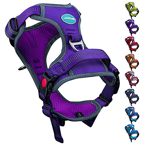 ThinkPet No Pull Harness Breathable Sport Harness with Handle-Dog Harnesses Reflective Adjustable for Medium Large Dogs,Back/Front Clip for Easy Control M Purple