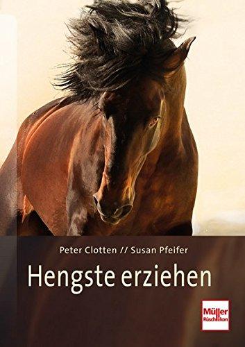 Hengste erziehen: So arbeiten die besten Pferdetrainer der Welt