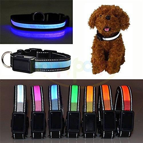 Batterie USB avec éclairage DEL et clignotant réglable réfléchissant collier DEL de chien de sécurité animaux domestique, étanche, taille pour chien animaux domestiques petits moyens grands
