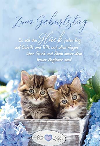 Geburtstagskarte Katzen, Geburtstagskarte, im Format DIN B6 176 x 125 mm, im Format DIN B6 176 x 125 mm, Klappkarte inkl. Umschlag, Motiv: Katzenbabys I