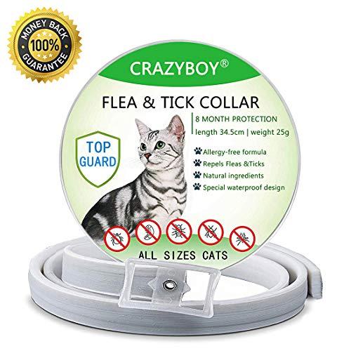 Collare Antipulci per Gatti Impermeabile, Collare Antipulci Pulci e Zecche Collare 8 Mesi di Efficacia Protezione, Formula Naturale | Completamente Regolabile | Lunghezza: 35 cm