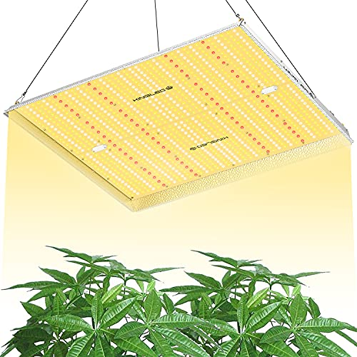 KINGPLUS UL4000 LED Grow Light 5x5ft Coverage Upgraded Full Spectrum Grow Lights for Indoor Hydroponic Plants Veg and Bloom Greenhouse Plant Light for Seed Starting with IR LEDs and Spotlight