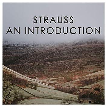 J. Strauss II: An Introduction