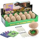 Dinosaur Eggs Excavation Dig Kit - Dinosaur Toys for Kids - Break Open 12 Dinosaur Eggs and Discover 12 Cute Dinosaurs - Archaeology Preschool Science STEM Crafts Birthday Gifts for Boys Girls