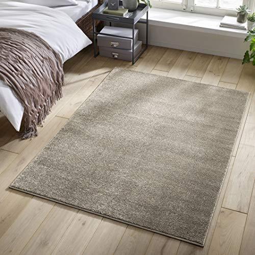 Designer-Teppich Pastell Kollektion | Flauschige Flachflor Teppiche fürs Wohnzimmer, Esszimmer, Schlafzimmer oder Kinderzimmer | Einfarbig, Schadstoffgeprüft (Natur Weiss, 140 x 200 cm)