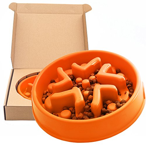 Simply Pets Online Slow Feeder Dog Bowl